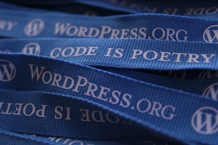 wordpress 552922 1920 - The best WordPress plugins