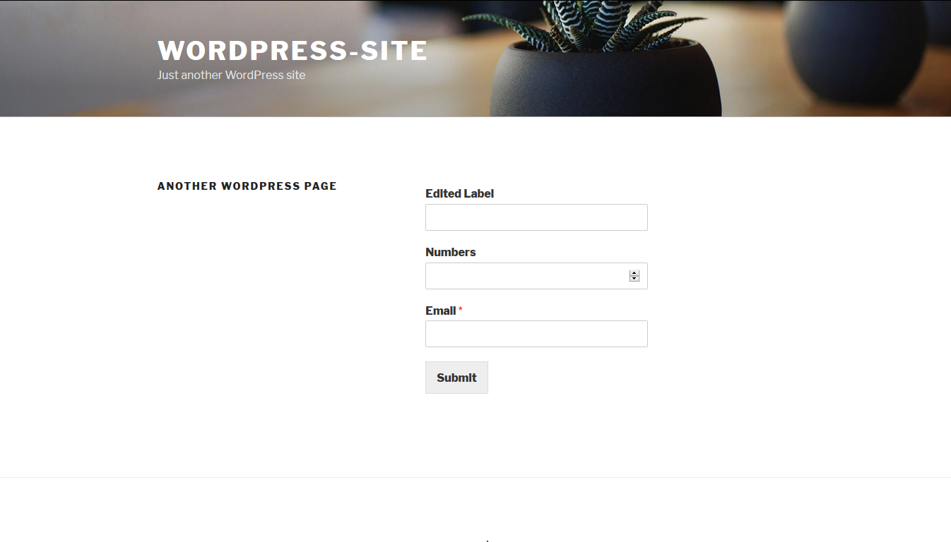 Form frontend