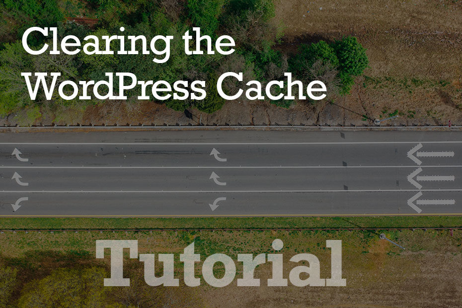 tutorial cache - How To Clear The WordPress Cache