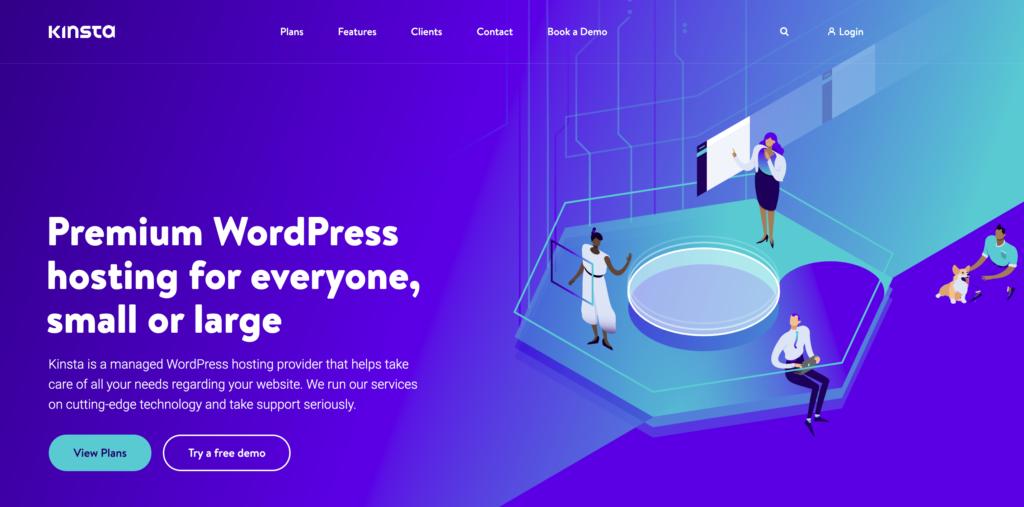 kinsta wordpress hosting - Securing WordPress Sites